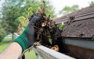 Four easy maintenance jobs for winter